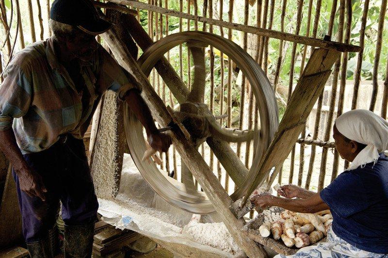 Processamento de mandioca, no Quilombo Nhunguara, em Iporanga (SP).
