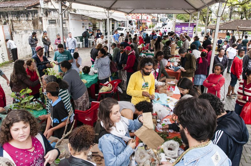 Feira de sementes reúne diversidade de produtos e pessoas em Eldorado.