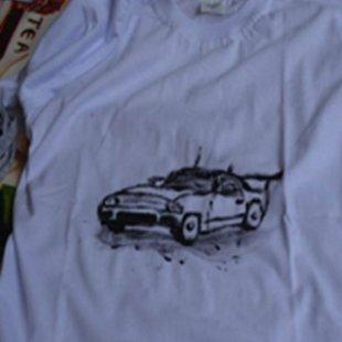 Cover carro