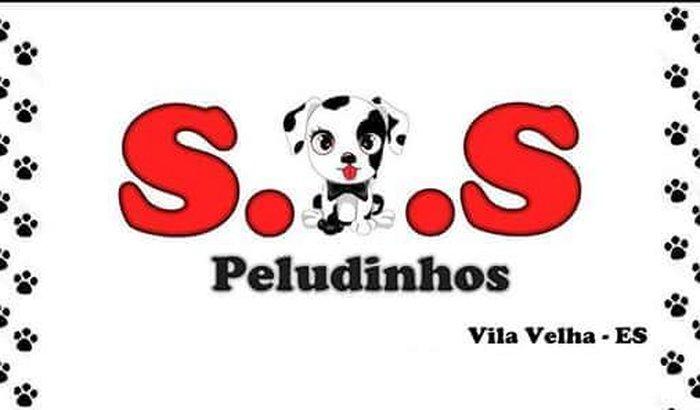 Ajuda aos animais do abrigo SOS PELUDINHOS