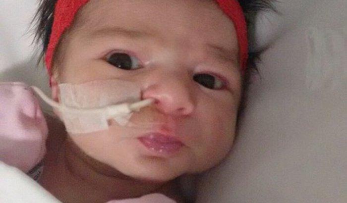 Isadora e sua familia precisa da sua ajuda!