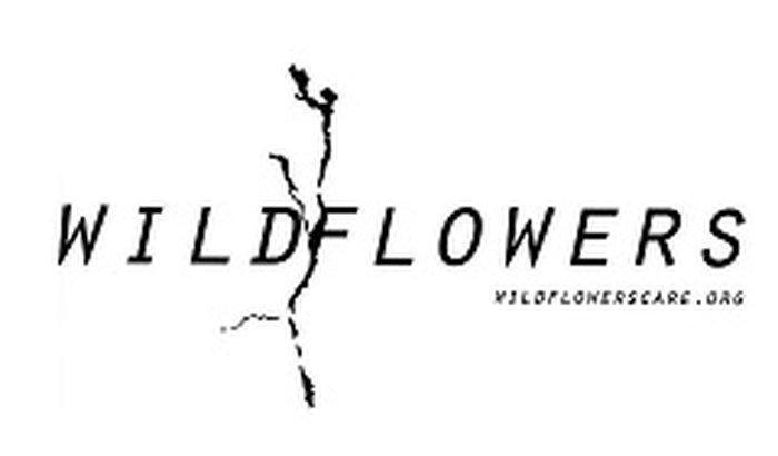Wildflowers - Projeto Quênia - Africa