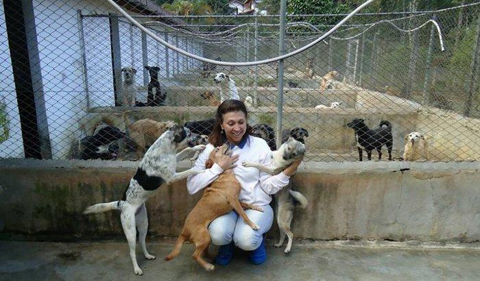 Ajuda para o Grupo Estimação/SOS Animal
