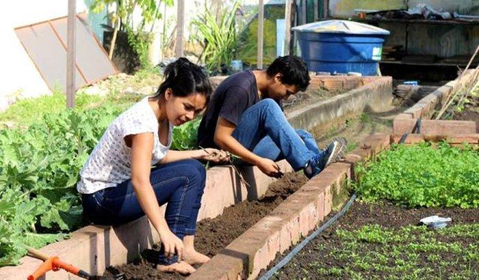 Irrigação da horta do Asilo São Vicente de Paula