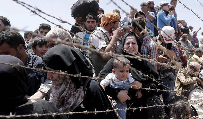 Meu Trabalho Voluntário com Refugiados Sírios