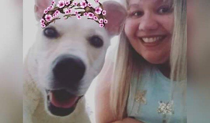 Voltar Para São Paulo,Ter um lar e fica perto dos dogs