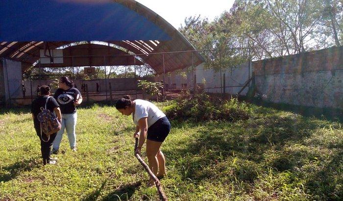 Projeto Horta e Jardim do Colégio Estadual Jk de Oliveira. Sua ajuda fará a diferença para nosso projeto.