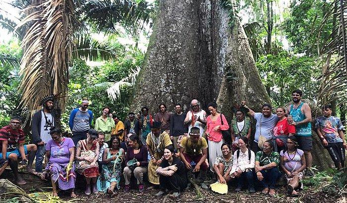 Apoie a proteção de Terras Indígenas na Amazônia