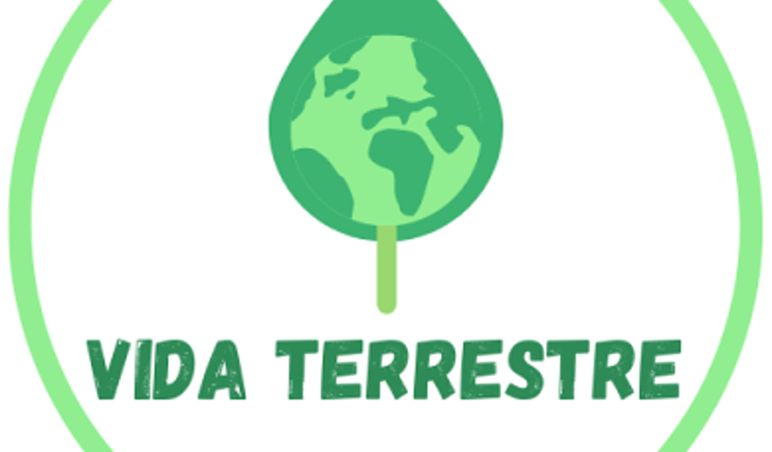 Vida Terrestre - Compra de fazenda na Amazônia