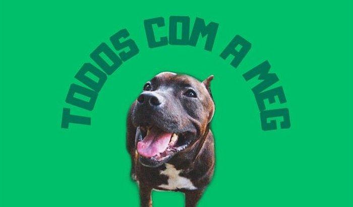 TODOS PELA MEG