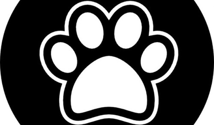 PetCenter app para seu PET