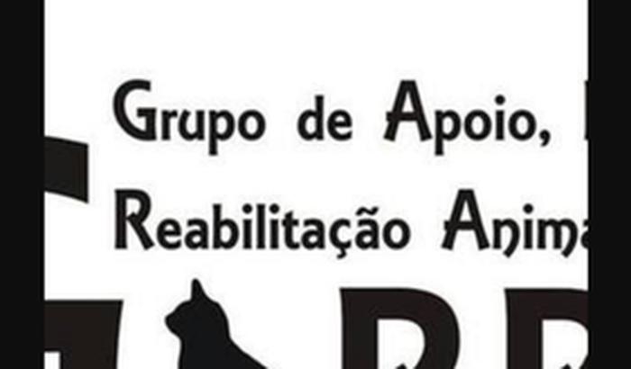 Contas e aluguel da ONG Garra - mês de Setembro.