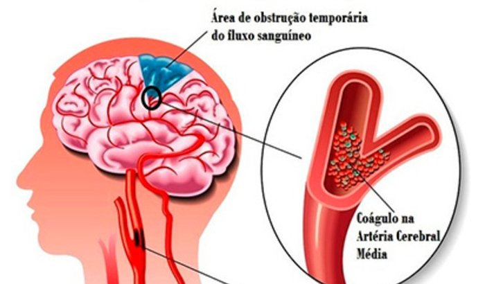 FAZER EXAMES NEUROLÓGICOS E CARDIOLÓGICOS E PAGAMENTOS DE UMAS DIVIDAS