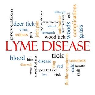 Cover lyme disease1
