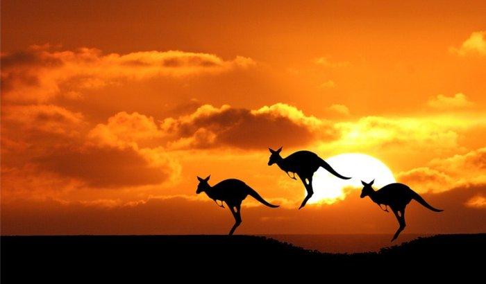 Sonho de Intercambio na Australia