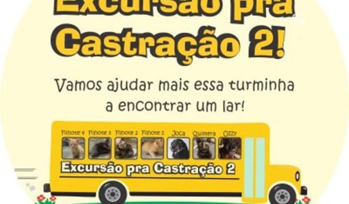 Excursão pra Castração 2!