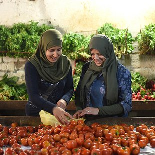 Cover baixa   soufrafilm manal hassan and maha hajjaj vegetableshopping