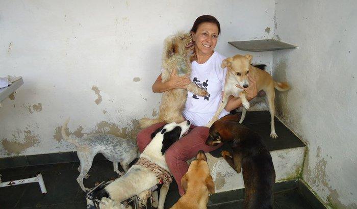 Ajuda aos animais do Grupo Estimação/SOS