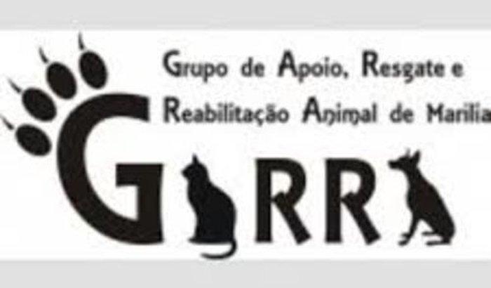 Contas da ONG Garra / Janeiro e fevereiro.