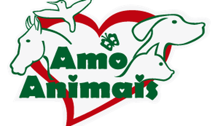 ONG Amo Animais