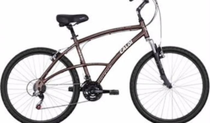 Projeto Fit! Preciso de uma bike!!!  Questão  de vida ou morte!