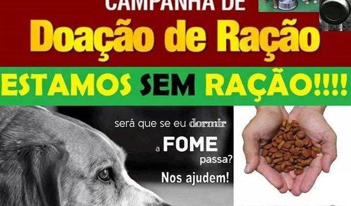 Animais - Faça sua doação para ajudar os animais de rua.