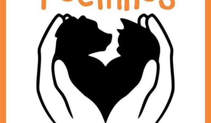 Ajuda pro Abrigo dos Focinhos de Anchieta - RJ