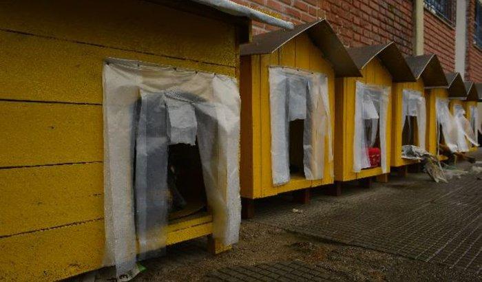 Material para fazer casinhas para câes de rua