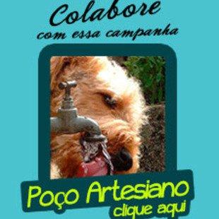 Cover campanhapoco mini