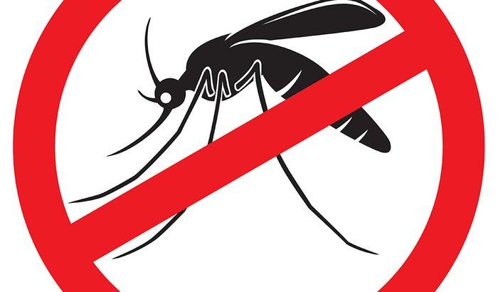Xô Aedes!
