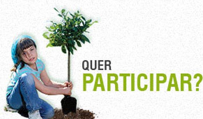 Plante uma árvore para um mundo melhor!