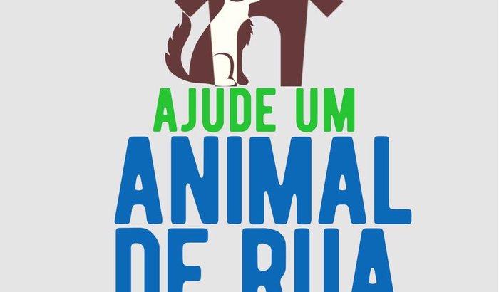 Projeto Ajude Um Animal de Rua