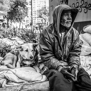 Cover retratos de moradores de ruas e seus caes.html