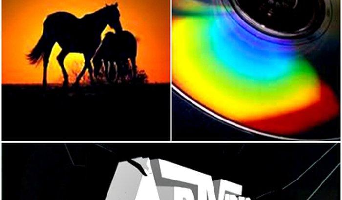 """Um novo Título para a Série """" Horsedvds """""""