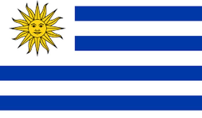 V ENCONTRO INTERNACIONAL DO CONPEDI - Uruguay