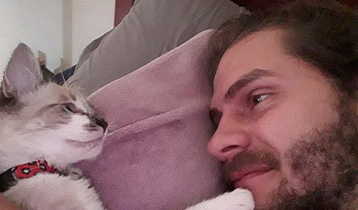 Cirurgia Nala (gatinha)
