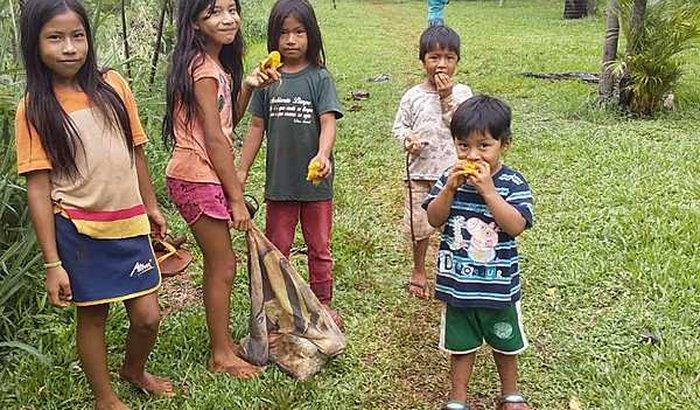Ajuda para construção horta orgânica na Aldeia Curva Guarani