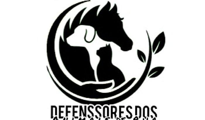 Vamos construir um Abrigo de Proteção aos Animais de Rua